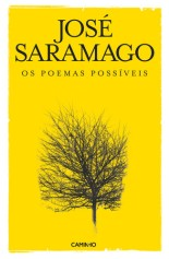 poemas_possiveis